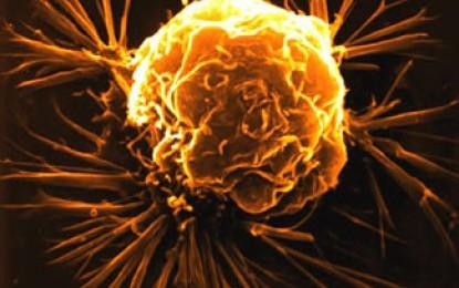 Vitamina D Kritike në Parandalimin e Kancerit